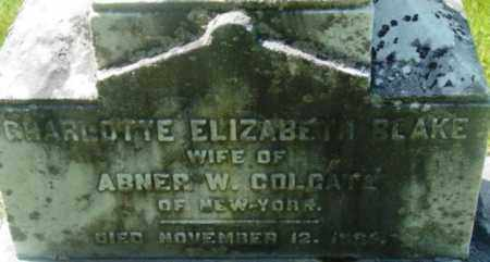 BLAKE, CHARLOTTE ELIZABETH - Berkshire County, Massachusetts | CHARLOTTE ELIZABETH BLAKE - Massachusetts Gravestone Photos