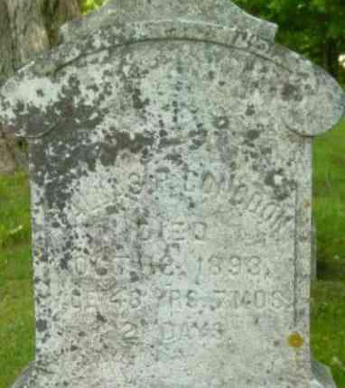 CONGDON, DALLAS P - Berkshire County, Massachusetts | DALLAS P CONGDON - Massachusetts Gravestone Photos