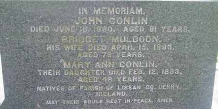 CONLIN, BRIDGET - Berkshire County, Massachusetts | BRIDGET CONLIN - Massachusetts Gravestone Photos