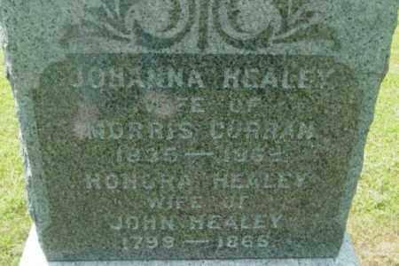HEALEY CURRAN, JOHANNA - Berkshire County, Massachusetts | JOHANNA HEALEY CURRAN - Massachusetts Gravestone Photos