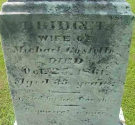 COSTELLO, BRIDGET - Berkshire County, Massachusetts | BRIDGET COSTELLO - Massachusetts Gravestone Photos