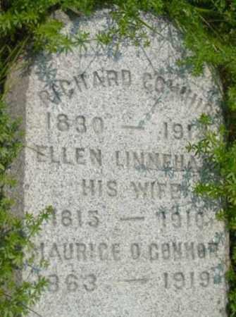 LINNEHAN, ELLEN - Berkshire County, Massachusetts | ELLEN LINNEHAN - Massachusetts Gravestone Photos