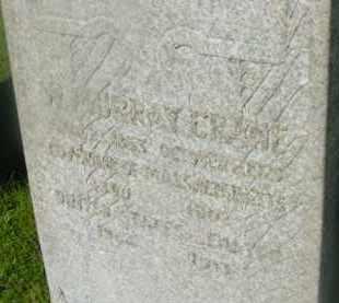 CRANE, W MURRAY - Berkshire County, Massachusetts | W MURRAY CRANE - Massachusetts Gravestone Photos