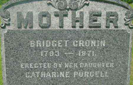 CRONIN, BRIDGET - Berkshire County, Massachusetts | BRIDGET CRONIN - Massachusetts Gravestone Photos
