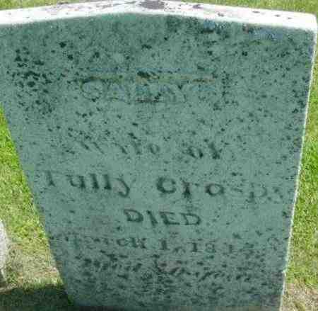 CROSBY, SALLY - Berkshire County, Massachusetts | SALLY CROSBY - Massachusetts Gravestone Photos