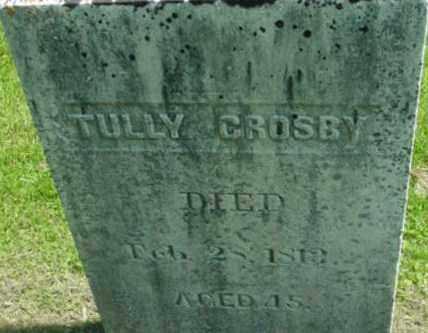 CROSBY, TULLY - Berkshire County, Massachusetts | TULLY CROSBY - Massachusetts Gravestone Photos
