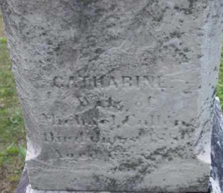 CULLEN, CATHARINE - Berkshire County, Massachusetts   CATHARINE CULLEN - Massachusetts Gravestone Photos