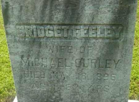 CURLEY, BRIDGET - Berkshire County, Massachusetts   BRIDGET CURLEY - Massachusetts Gravestone Photos