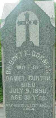 GORMAN CURTIN, BRIDGET E - Berkshire County, Massachusetts | BRIDGET E GORMAN CURTIN - Massachusetts Gravestone Photos