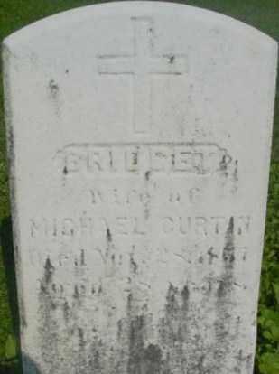 CURTIN, BRIDGET - Berkshire County, Massachusetts | BRIDGET CURTIN - Massachusetts Gravestone Photos