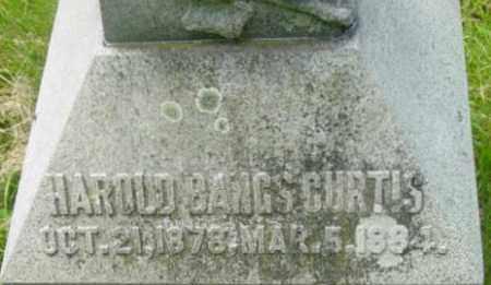 CURTIS, HAROLD BANGS - Berkshire County, Massachusetts | HAROLD BANGS CURTIS - Massachusetts Gravestone Photos