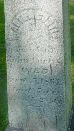 CURTIS, MARTHA - Berkshire County, Massachusetts   MARTHA CURTIS - Massachusetts Gravestone Photos