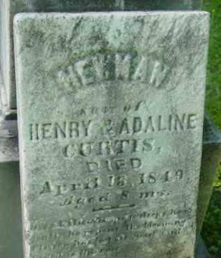 CURTIS, NEWMAN - Berkshire County, Massachusetts   NEWMAN CURTIS - Massachusetts Gravestone Photos