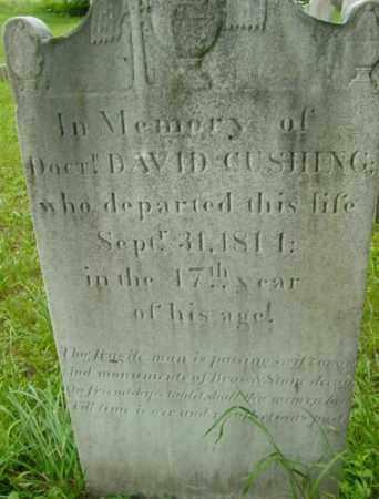 CUSHING, DAVID - Berkshire County, Massachusetts | DAVID CUSHING - Massachusetts Gravestone Photos