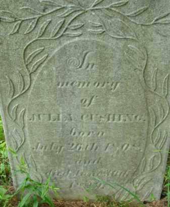 CUSHING, JULIA - Berkshire County, Massachusetts | JULIA CUSHING - Massachusetts Gravestone Photos