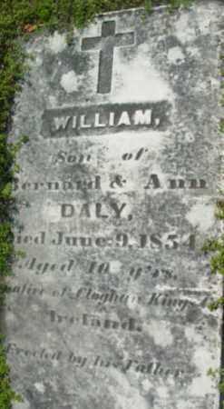 DALY, WILLIAM - Berkshire County, Massachusetts | WILLIAM DALY - Massachusetts Gravestone Photos