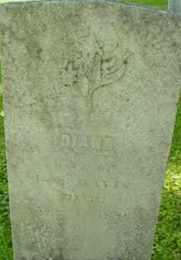 DAVIS, DIANA - Berkshire County, Massachusetts | DIANA DAVIS - Massachusetts Gravestone Photos