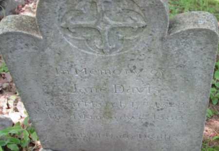 DAVIS, JANE - Berkshire County, Massachusetts | JANE DAVIS - Massachusetts Gravestone Photos