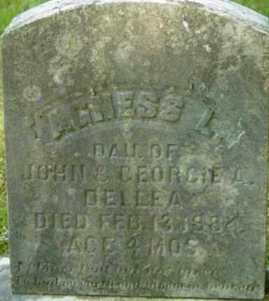 DELLEA, AGNESS L - Berkshire County, Massachusetts | AGNESS L DELLEA - Massachusetts Gravestone Photos