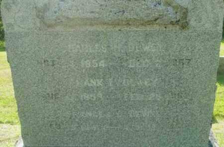 DEWEY, FRANCES E - Berkshire County, Massachusetts | FRANCES E DEWEY - Massachusetts Gravestone Photos