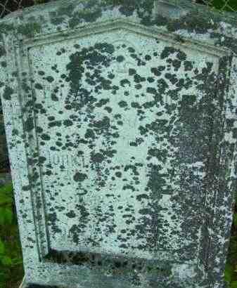 DEWEY, PHEBE A - Berkshire County, Massachusetts   PHEBE A DEWEY - Massachusetts Gravestone Photos