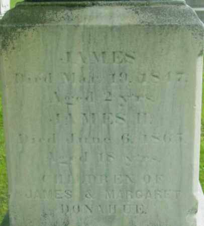 DONAHUE, JAMES - Berkshire County, Massachusetts | JAMES DONAHUE - Massachusetts Gravestone Photos