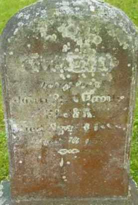 ELSER, AMANDA L - Berkshire County, Massachusetts | AMANDA L ELSER - Massachusetts Gravestone Photos