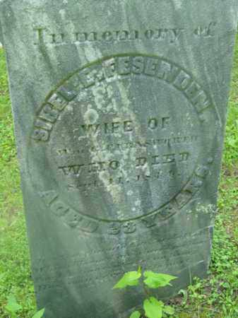 FESENDEN FARNSWORTH, SIBEL E - Berkshire County, Massachusetts | SIBEL E FESENDEN FARNSWORTH - Massachusetts Gravestone Photos