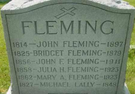 FLEMING, BRIDGET - Berkshire County, Massachusetts | BRIDGET FLEMING - Massachusetts Gravestone Photos