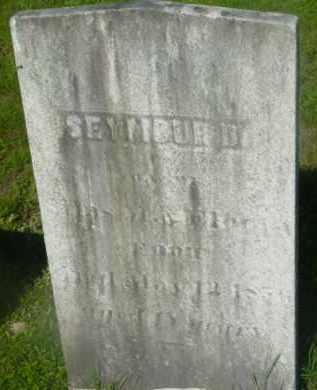 FOOT, SEYMOUR D - Berkshire County, Massachusetts   SEYMOUR D FOOT - Massachusetts Gravestone Photos
