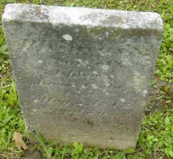 GALLUP, PHINEAS - Berkshire County, Massachusetts | PHINEAS GALLUP - Massachusetts Gravestone Photos