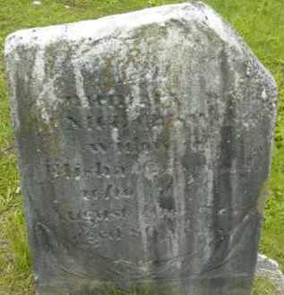 GRISWOLD, EUNICE - Berkshire County, Massachusetts | EUNICE GRISWOLD - Massachusetts Gravestone Photos