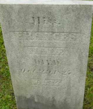 HALE, FRANCES - Berkshire County, Massachusetts | FRANCES HALE - Massachusetts Gravestone Photos
