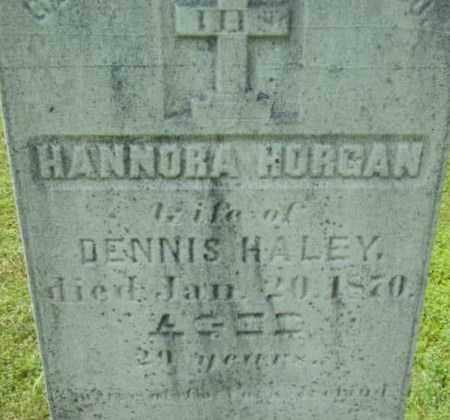 HORGAN, HANNORA - Berkshire County, Massachusetts | HANNORA HORGAN - Massachusetts Gravestone Photos