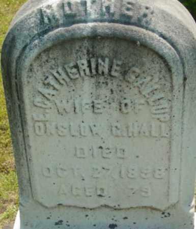 HALL, E CATHERINE - Berkshire County, Massachusetts | E CATHERINE HALL - Massachusetts Gravestone Photos