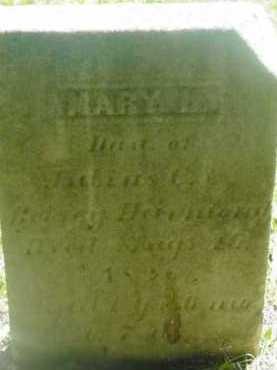 HAMMOND, MARY L - Berkshire County, Massachusetts | MARY L HAMMOND - Massachusetts Gravestone Photos