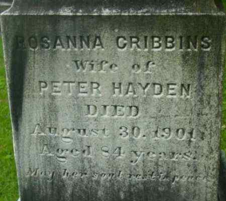 HAYDEN, ROSANNA - Berkshire County, Massachusetts | ROSANNA HAYDEN - Massachusetts Gravestone Photos