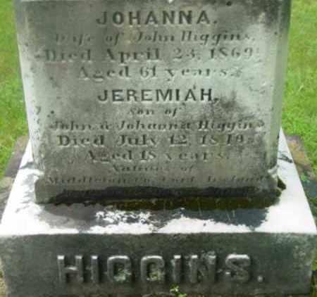 HIGGINS, JOHANNA - Berkshire County, Massachusetts | JOHANNA HIGGINS - Massachusetts Gravestone Photos