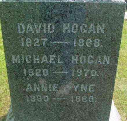 HOGAN, DAVID - Berkshire County, Massachusetts | DAVID HOGAN - Massachusetts Gravestone Photos