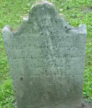 HOVEY, ELLEN THEER - Berkshire County, Massachusetts | ELLEN THEER HOVEY - Massachusetts Gravestone Photos