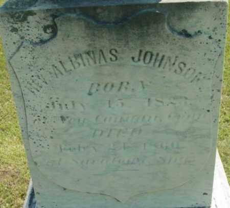 JOHNSON, ALBINAS - Berkshire County, Massachusetts | ALBINAS JOHNSON - Massachusetts Gravestone Photos