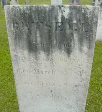 JOHNSON, BETSEY L - Berkshire County, Massachusetts   BETSEY L JOHNSON - Massachusetts Gravestone Photos