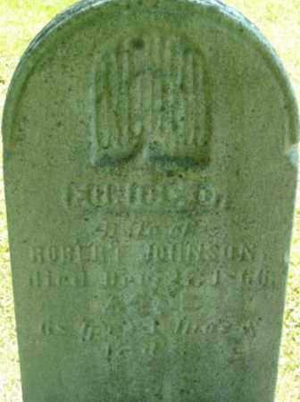 JOHNSON, EUNICE D - Berkshire County, Massachusetts | EUNICE D JOHNSON - Massachusetts Gravestone Photos