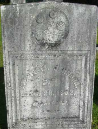 JOHNSON, LIZZIE M - Berkshire County, Massachusetts | LIZZIE M JOHNSON - Massachusetts Gravestone Photos