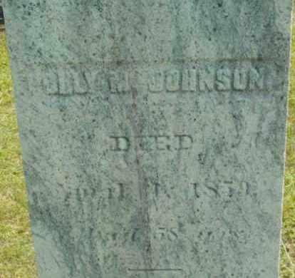 JOHNSON, POLLY M - Berkshire County, Massachusetts | POLLY M JOHNSON - Massachusetts Gravestone Photos