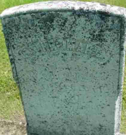 LANDERS, ESTHER MARIA - Berkshire County, Massachusetts | ESTHER MARIA LANDERS - Massachusetts Gravestone Photos