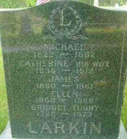 LARKIN, MICHAEL - Berkshire County, Massachusetts | MICHAEL LARKIN - Massachusetts Gravestone Photos