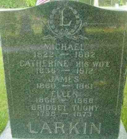LARKIN, ELLEN - Berkshire County, Massachusetts | ELLEN LARKIN - Massachusetts Gravestone Photos