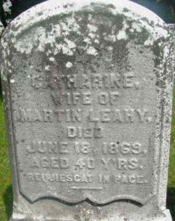 LEAHY, CATHARINE - Berkshire County, Massachusetts   CATHARINE LEAHY - Massachusetts Gravestone Photos