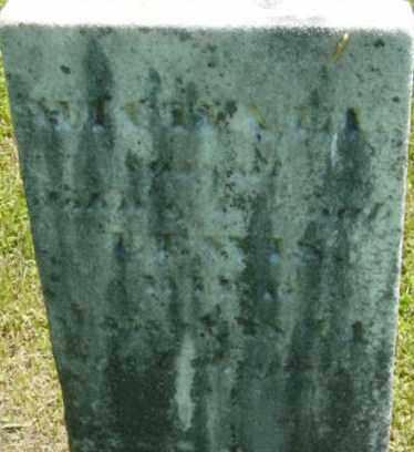 LEWIS, MICHAEL - Berkshire County, Massachusetts | MICHAEL LEWIS - Massachusetts Gravestone Photos